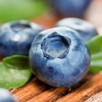 Blueberries with leaves on wooden background